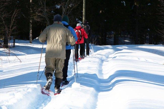 Last minute snowshoe walking trip.