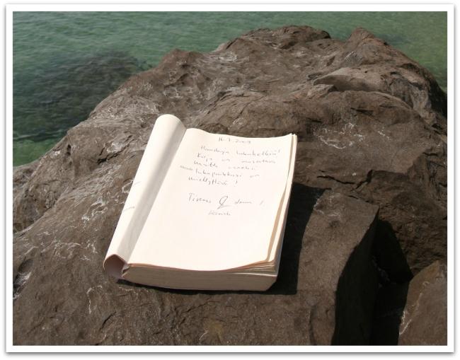 """Resorttimme kirjahyllystä löytyivät kirjaterveiset: """"Hauskoja lukuhetkiä! Kirja on masentava, mutta onneksi lukupaikkasi on miellyttävä! Timo&Laura, Helsinki"""""""