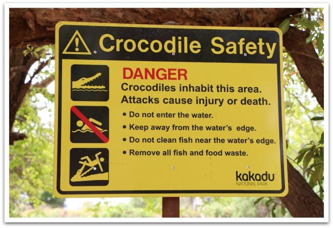 Ei ollut kylttejä pystytetty turhaan, kyltin takainen joki nimittäin kuhisi krokotiilejä.
