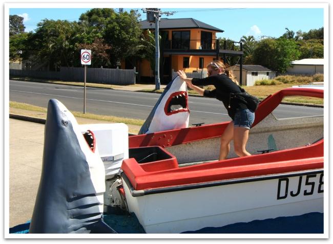 Matkailijat saapuvat Harvey Bayhin yleensä jatkaakseen matkaa Fraser Islandille tai valasbongausretkille. Me otimme matsin haiden kanssa...