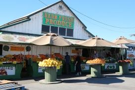 Kaliforniassa tien varsilla oli paljon vihanneskauppoja, joista vihannekset sai huomattavasti halvemmalla kuin kaupasta.